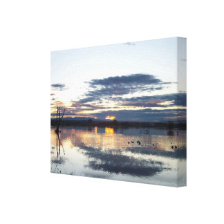 Bosque Sunrise Photography Stretched Print Gallery Wrapped Canvas