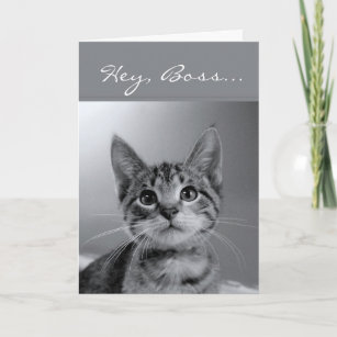 Boss Have A PURR Fectly MEOW Velous Birthday Card