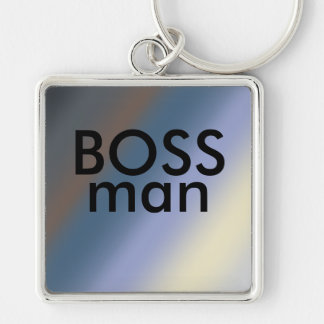 BOSS man key-ring Silver/steal blue blends Key Ring