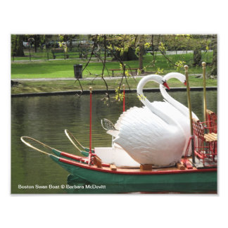 Boston Swan Boat Photo