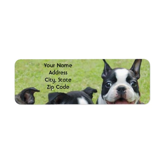 Boston Terrier address labels