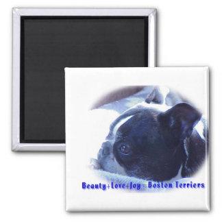 Boston Terrier:  Beauty, Love, Joy Square Magnet