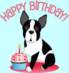 Boston Terrier Birthday Gift Wrap