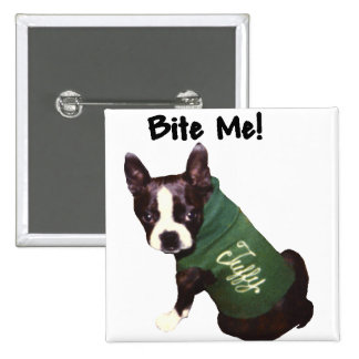 Boston Terrier:  Bite Me! 15 Cm Square Badge