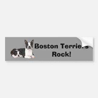 Boston Terrier Buddies Bumper Sticker