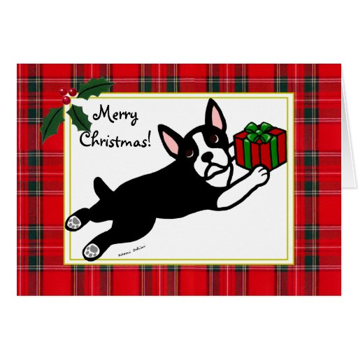 Boston Terrier Cartoon Tartan Christmas Cards