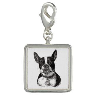 Boston Terrier Charm