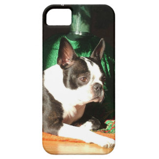 Boston Terrier Christmas with Piper iPhone 5 Cover
