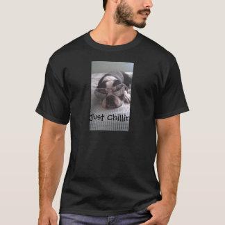 Boston Terrier Clothes T-Shirt