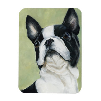 Boston Terrier Dog Art Magnet