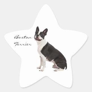 Boston Terrier dog beautiful custom stickers, gift Star Sticker