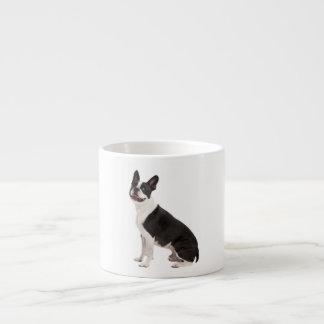 Boston Terrier dog beautiful photo gift