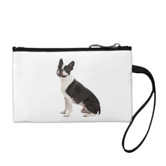 Boston Terrier dog beautiful photo, gift Coin Purse