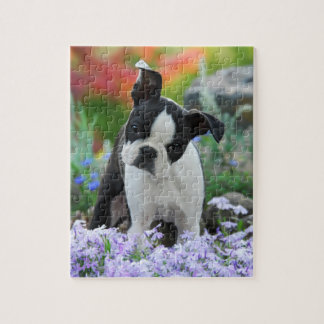Boston Terrier Dog Cute Puppy Game 8x10 Jigsaw Puzzle
