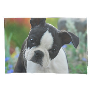 Boston Terrier Dog Cute Puppy Photo - Pillow-Cover Pillowcase