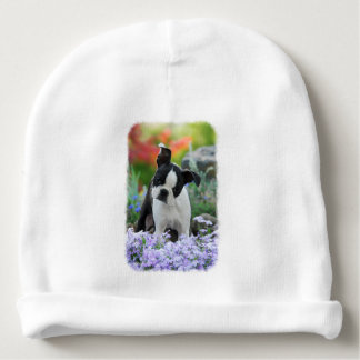 Boston Terrier Dog Cute Puppy Portrait Photo - hat Baby Beanie