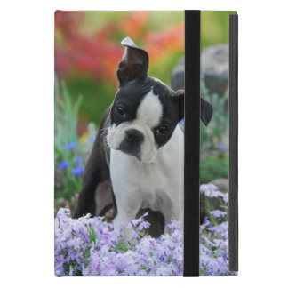 Boston Terrier Dog Cute Puppy, protection hard Cover For iPad Mini