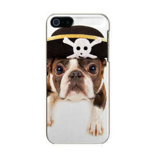 Boston Terrier Dog Dressed As A Pirate Incipio Feather® Shine iPhone 5 Case