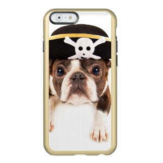 Boston Terrier Dog Dressed As A Pirate Incipio Feather® Shine iPhone 6 Case