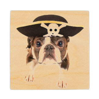Boston Terrier Dog Dressed As A Pirate Wood Coaster