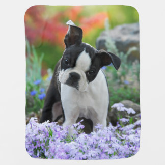 Boston Terrier Dog Puppy Baby Blanket
