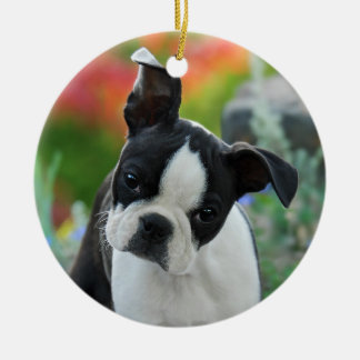 Boston Terrier Dog Puppy hang Decor Round Ceramic Decoration