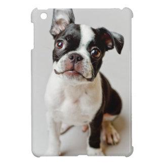 Boston Terrier dog puppy. iPad Mini Cases