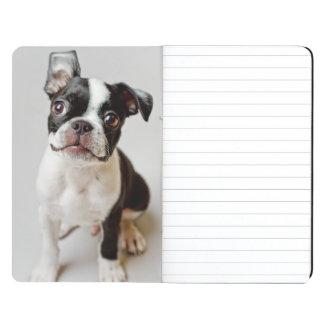 Boston Terrier dog puppy. Journals
