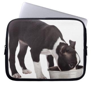 Boston terrier eating from bowl laptop sleeve