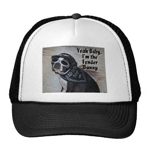 Boston Terrier:  Fender Bunny Mesh Hat