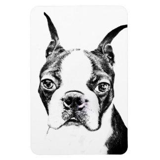 Boston Terrier Rectangular Photo Magnet