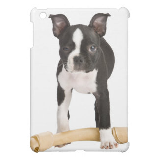 Boston terrier guarding twisty bone iPad mini cases