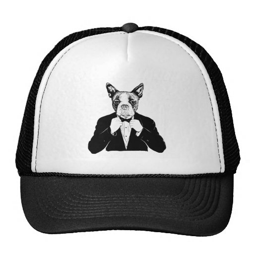 Boston Terrier Mesh Hats