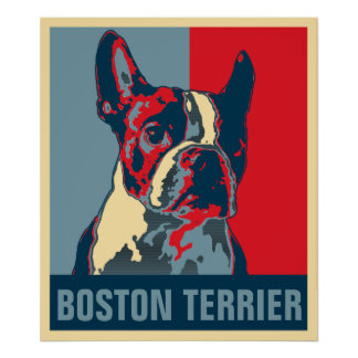 Boston Terrier Hope Inspired Poster