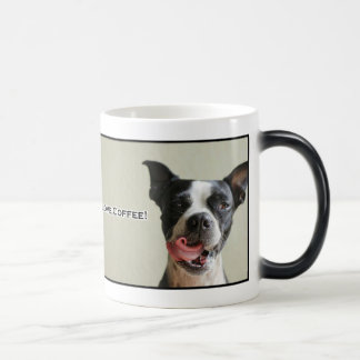 Boston Terrier I Love Coffee Mug
