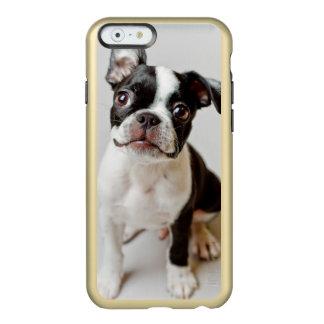 Boston Terrier Incipio Feather® Shine iPhone 6 Case