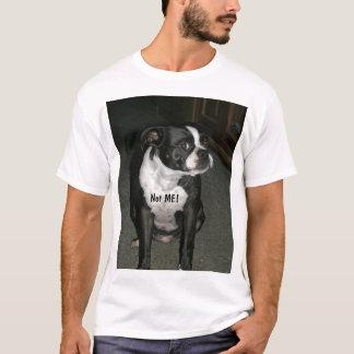 Boston Terrier Innocent Angel T-Shirt