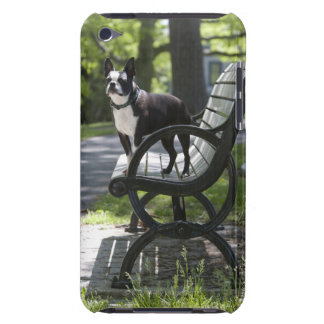 Boston Terrier iPod Touch Cover