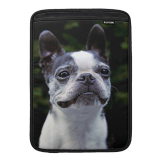 Boston Terrier MacBook Air Sleeve