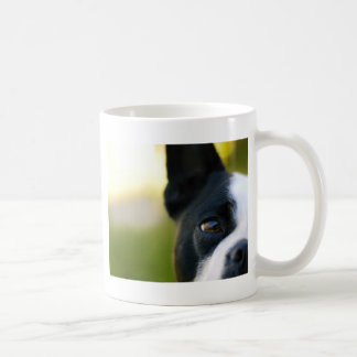 Boston Terrier Coffee Mugs
