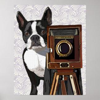 Boston Terrier Photographer Poster