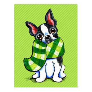 Boston Terrier Plaid Scarf Winter Postcards