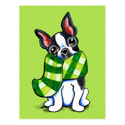 Boston Terrier Plaid Scarf Winter Postcards