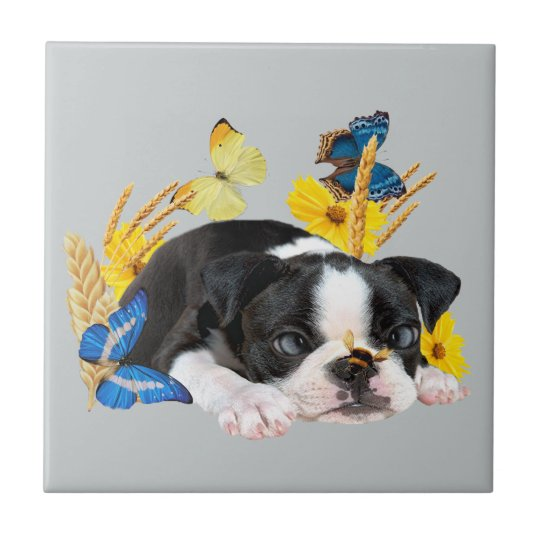 Boston Terrier Play Day Small Square Tile