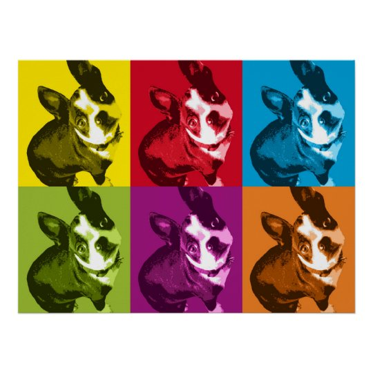 Boston Terrier Pop Art Poster