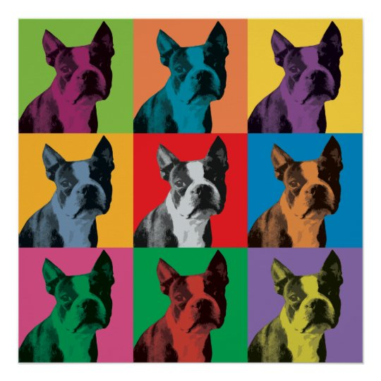 Boston Terrier Pop-Art Poster
