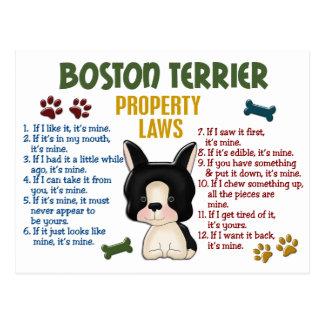 Boston Terrier Property Laws 4 Postcard