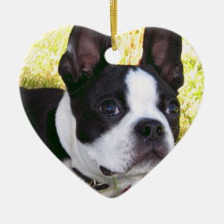 Boston Terrier Pup Ornament