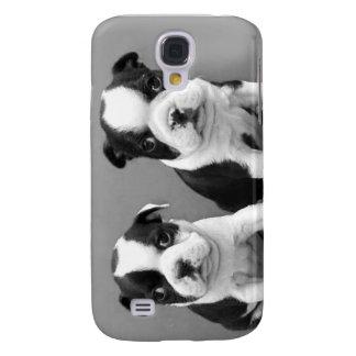 Boston Terrier Puppies iphone 3G Speck Case Galaxy S4 Case