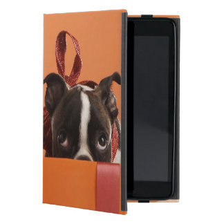 Boston terrier puppy in gift box cover for iPad mini